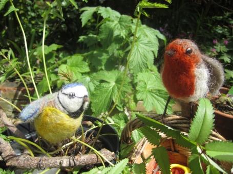 garden birds 2 001